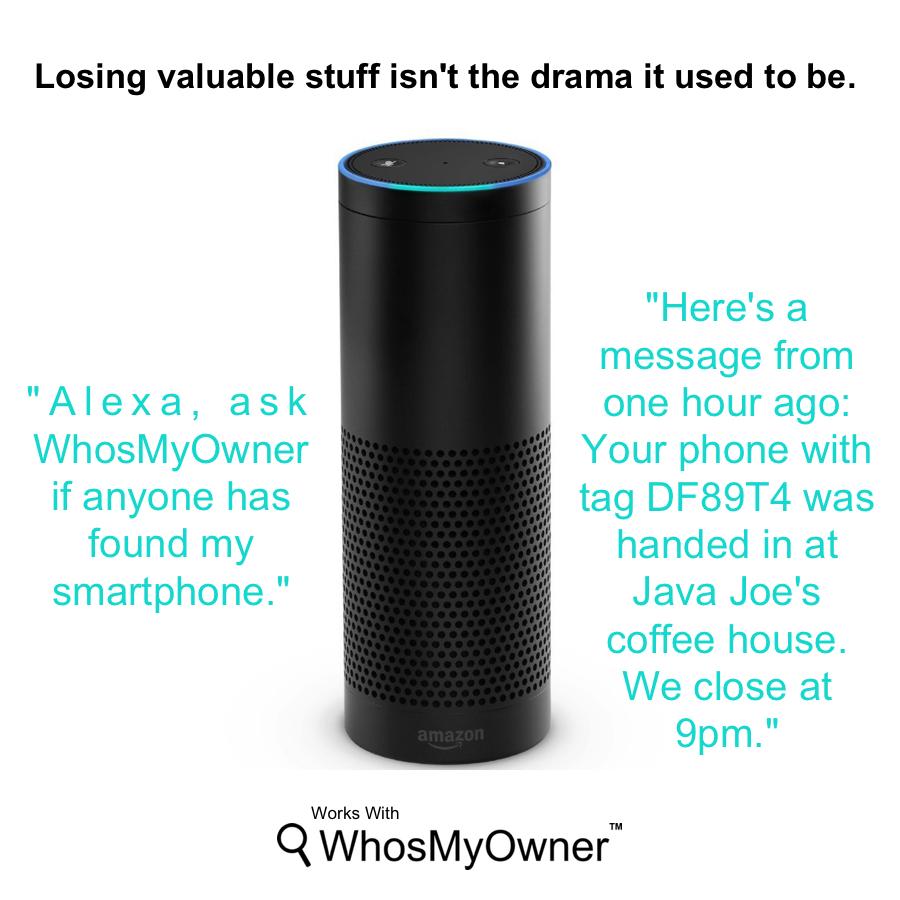 Subscribers: Who wants an Amazon Echo?